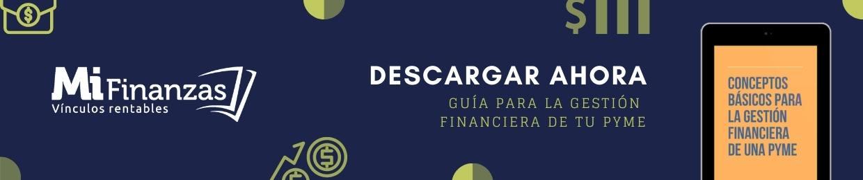 guia conceptos basicos gestion financiera